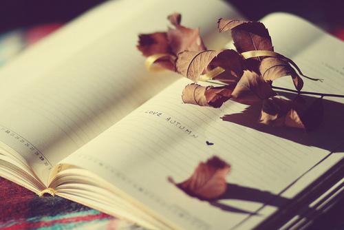 Registrar algumas lembranças é uma das maneira de revisitar grandes momentos